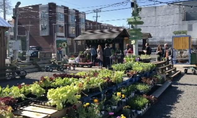 Farmer's Markets Around Philadelphia