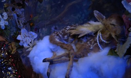 Northern Liberties: See Artists Compete at the 5th Annual Philadelphia Alternative Taxidermy Competition